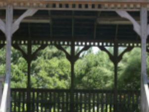 large deck gazebo with trees in background